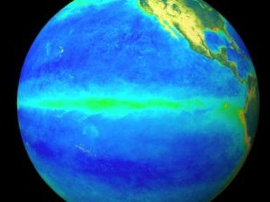 SeaWiFS Biosphere: Rotating Globe with Zoom to Pacific Ocean