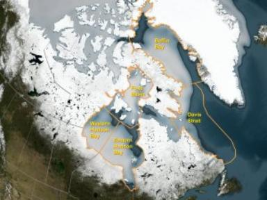 'Possible Effects of Climate Warming on Selected Populations of Polar Bears in the Canadian Arctic' Overview Map