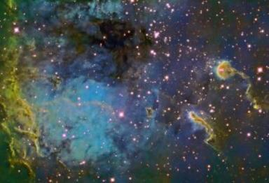 The Tadpoles of IC 410