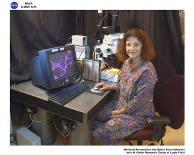 Researcher studying microvascular remodeling for Astronaut health in microgravity and space exploration
