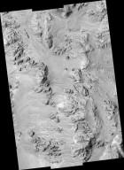 Alluvial Fans in Mojave Crater: Did It Rain on Mars?