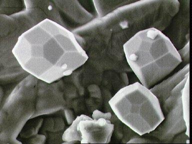 Scanning electron microscope view of iron crystal